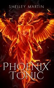 PhoenixeBook